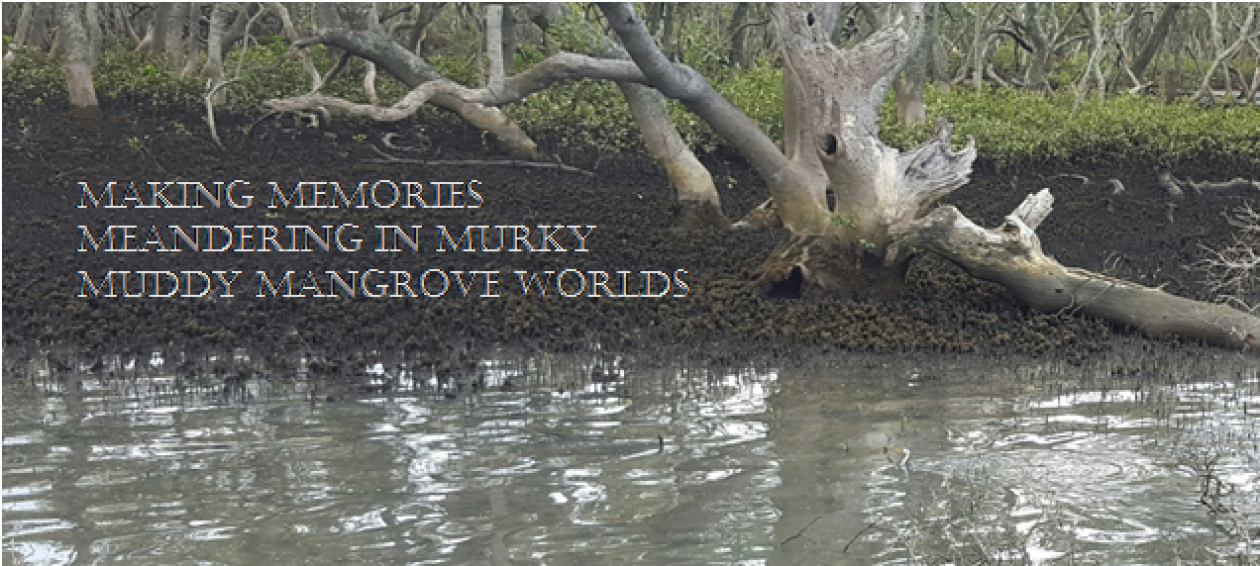 Muddy Mangroves